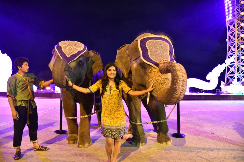 Elephant dance at phuket